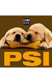 PSI CUBE BOOK/CRB