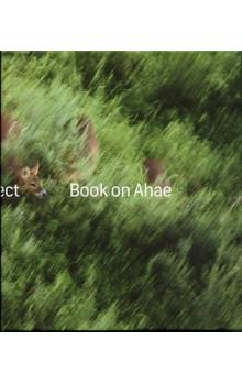 Book on Ahae -- So Simple, so Beautiful, so Perfect
