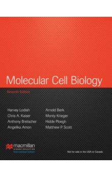 Molecular Cell Biology, 7th Ed.