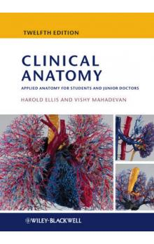 Clinical Anatomy