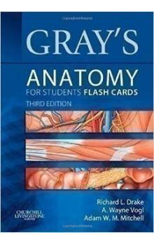 Gray´s Anatomy for Students Flash Cards, 3rd Ed.