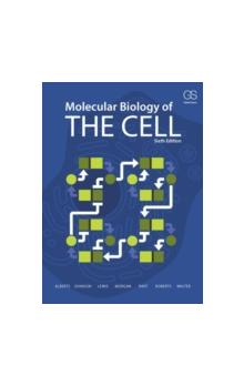 Molecular Biology of the Cell, 6th Ed. PB