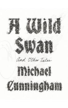A Wild Swan and Other Tales