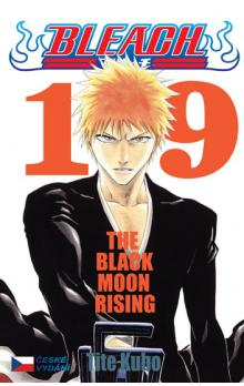 Bleach 19 -- The Black Moon Rising