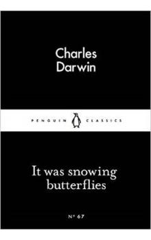 It Was Snowing Butterflies (Little Black Classics)