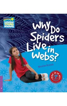Why Do Spiders Live in Webs? Level 4 Factbook -- Doplňky