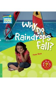 Why Do Raindrops Fall? Level 3 Factbook -- Doplňky