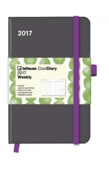 Di�� Cool Diary Grey/Stones Green 2017 WEEKLY (9 x 14 cm)