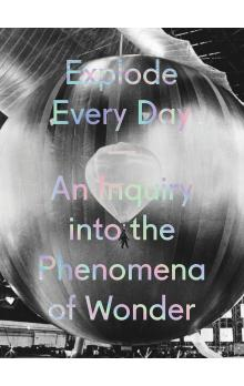 Explode Every Day: An Inquiry Into the Phenomena of Wonder