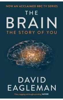 The Brain, The Story of You