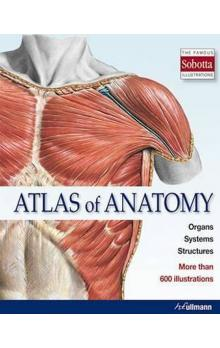 Atlas of Anatomy : The Human Body Described in 13 Systems