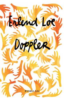 Doppler - Loe Erlend - e-book