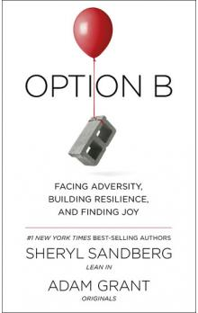 Option B -- Facing Adversity, Building Resilience, and Finding Joy