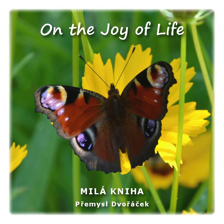 On the Joy of Life