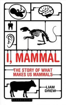 I, Mammal : The Story of What Makes Us Mammals