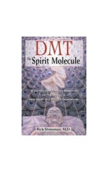 DMT: The Spirit Molecule A Doctors Revolutionary Research into the Biology of out-of-Body Near-Death and Mystical Experiences