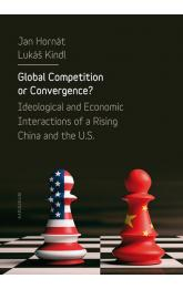 Global Competition or Convergence?