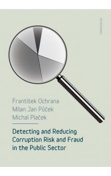 Detecting and Reducing Corruption Risk and Fraud in the Public Sector